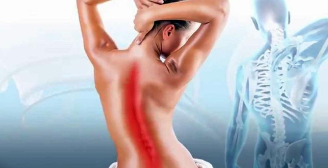 Лечебный массаж любой зоны (10 посещений)  в салоне «Массаж & SPA»