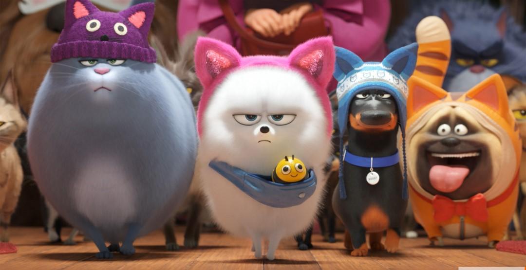 Фильм «Тайная жизнь домашних животных 2» в кинотеатре «Россия»