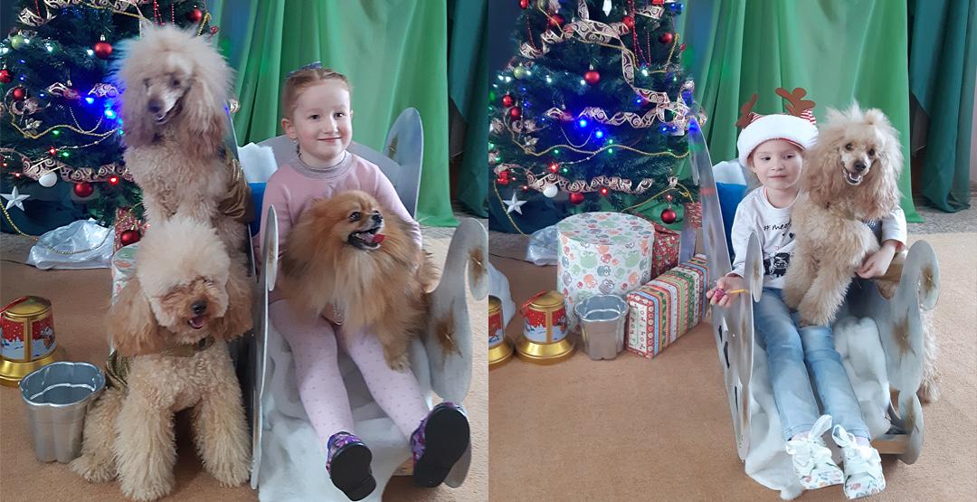 Мастер-класс для деток с дрессированными собачками (2+)